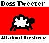 bosstweeterallaboutthesheep.jpg